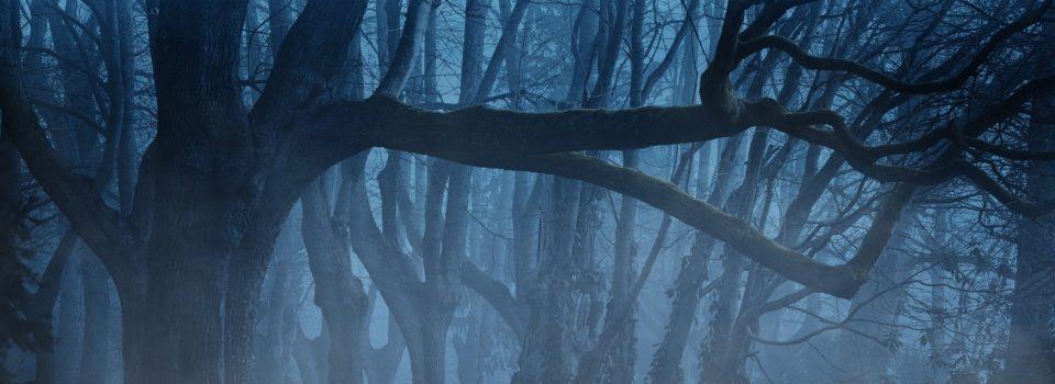 Bei Nacht und Nebel